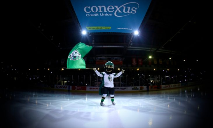 Riley the Raider gets fans pumped up before a WHL Playoff game at the Art Hauser Centre. Photo: Lucas Chudleigh/Apollo Multimedia