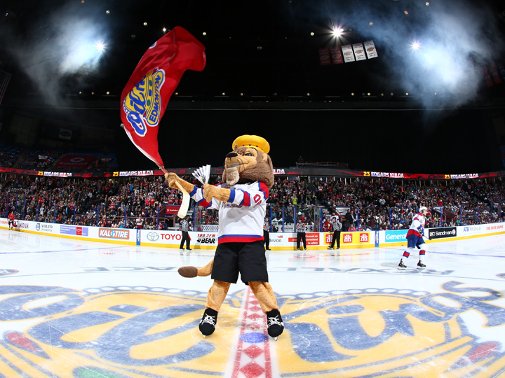 Louie the Lion gets fans pumped up before an Edmonton Oil Kings home game during the 2014 WHL Championship Series. Photo: Andy Devlin/Edmonton Oil Kings